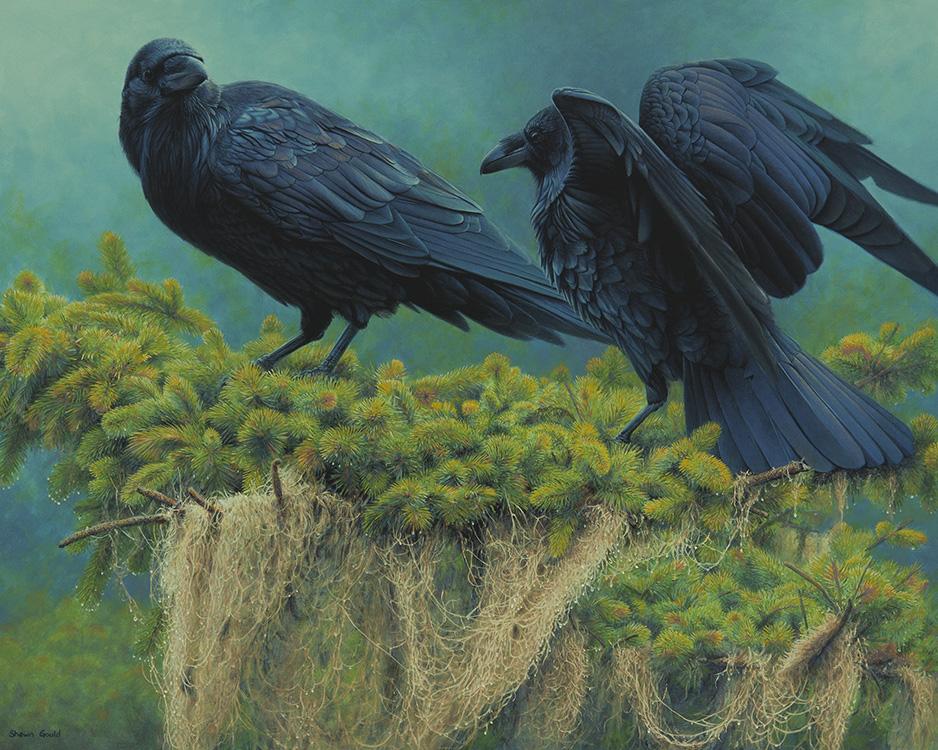 RavenRendezvous