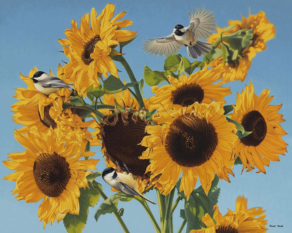 SunflowersChickadees